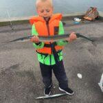 Stor flot hornfisk fra Ebeltoft